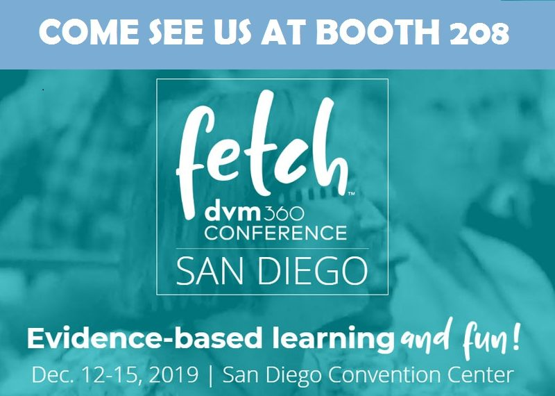 Fetch San Diego 2019